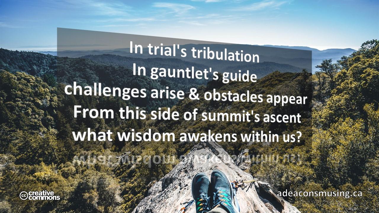 Wisdom Awakens