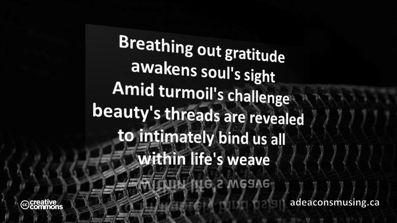 Life's Weave